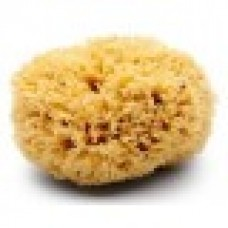 "8""-9"" Premium Rock Island Sea Wool Sponge"
